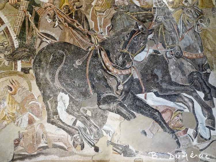 Naples — détail de mosaïque