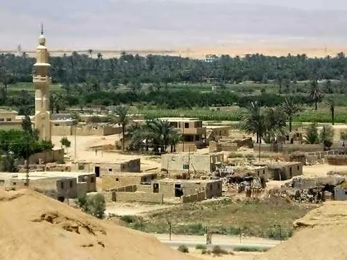 Oasis au bord du Canal de Suez